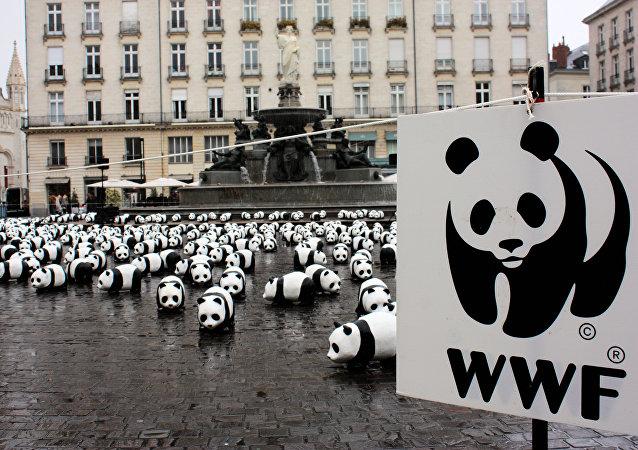 Logo de WWF