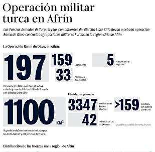 Todos los detalles de la operación militar turca en Afrín