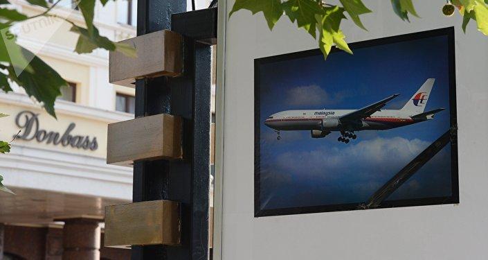 Foto en memoria de la catástrofe del Boeing MH17