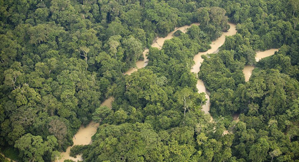 Un río en el estado de Pará (norte) de Brasil (imagen referencial)