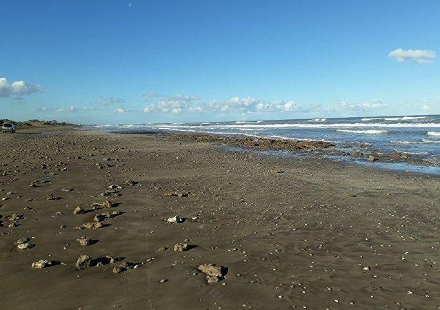 Playa argentina donde sucedió el hallazgo de un gliptodonte juvenil