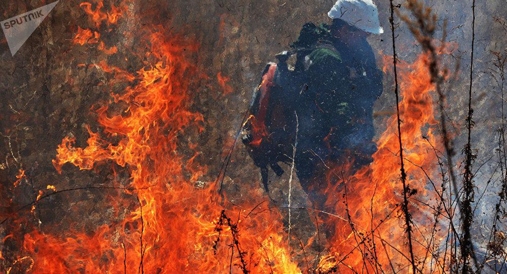 Demanda Horacio Antonio prevenir y controlar los incendios forestales en Oaxaca
