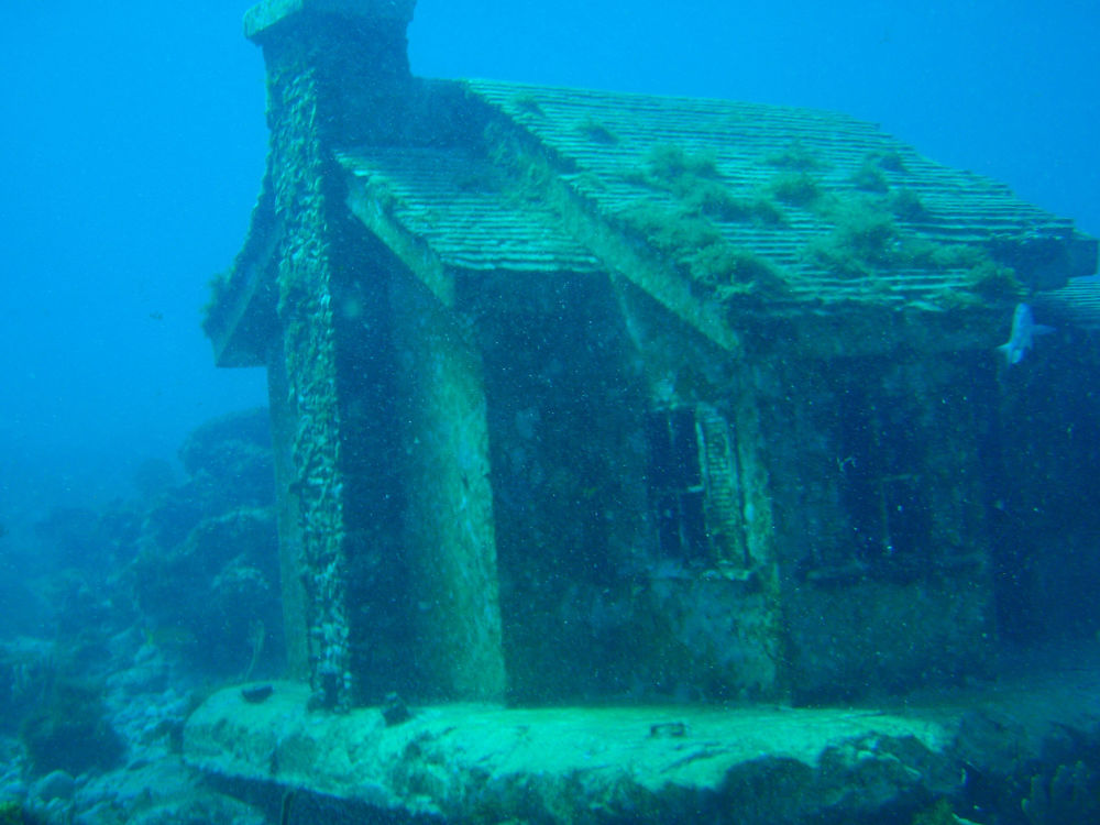 Hermosos y ahogados: un misterioso mundo en las profundidades marinas