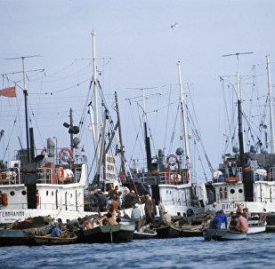 Un puerto de buques en el mar de Azov