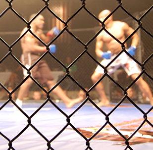 Artes marciales mixtas (imagen ilustrativa)