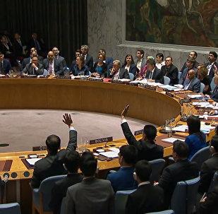 El Consejo de Seguridad de la ONU rechaza la resolución rusa sobre el ataque contra Siria