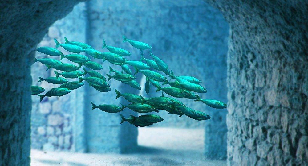 Peces en un edificio submarino (ilustración)