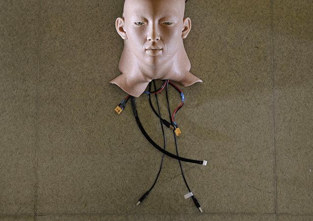Cabeza de un robot, desarrollo de una empresa de inteligencia artificial de Hong Kong