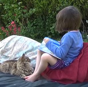 Mejores amigas: una gata le da fuerzas a una niña para vencer su autismo