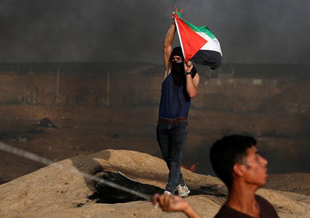Un manifestante con la bandera de Palestina