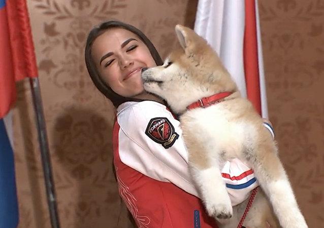 La patinadora artística rusa Alina Zaguítova recibió un cachorro de la raza japonesa Akita Inu por su victoria en los JJOO de Pyeongchang 2018