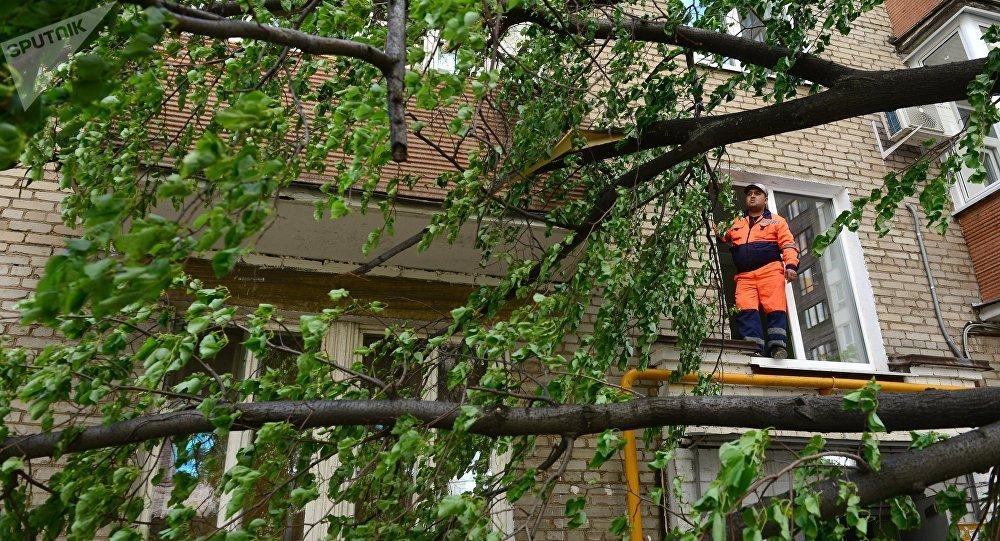 Consecuencias del huracán en Moscú (archivo)