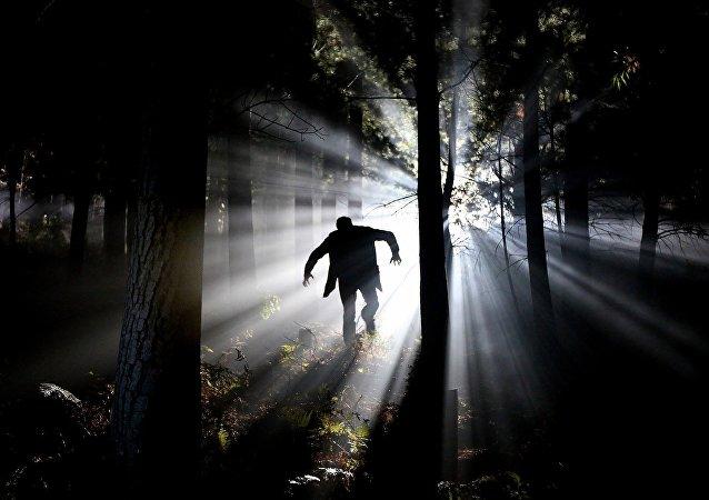 Un hombre en el bosque (archivo)