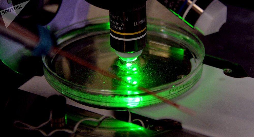 Un microscopio (imagen referencial)