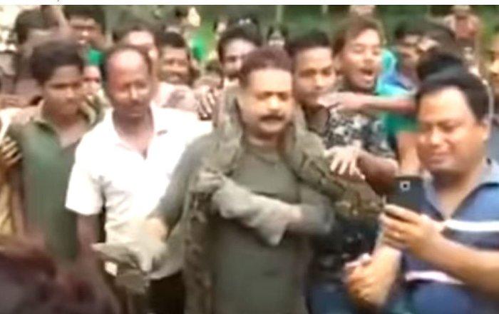 Un pitón estrangula a un hombre en India