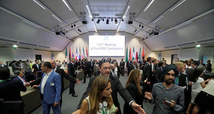 La cumbre de los países de OPEP en Viena