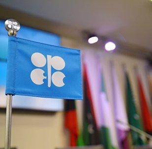 Logo de OPEP (imagen referencial)