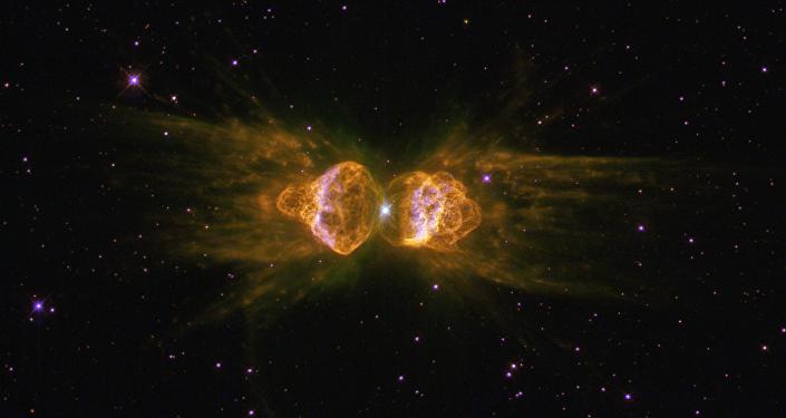 Nebulosa de la Hormiga