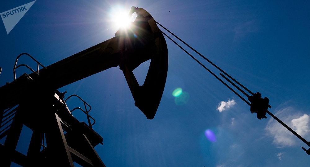 Petróleo estará en Cumbre de No Alineados de Venezuela