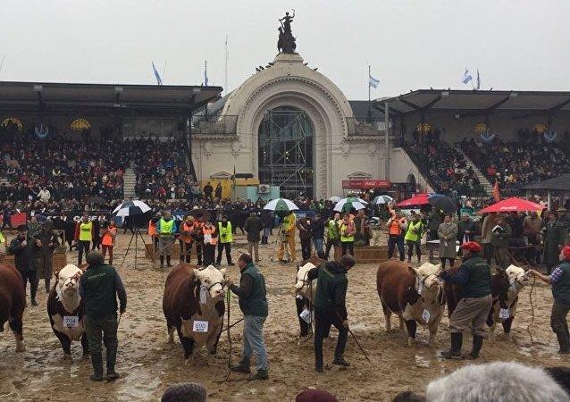 Exposición Rural en Buenos Aires, Argentina 2018