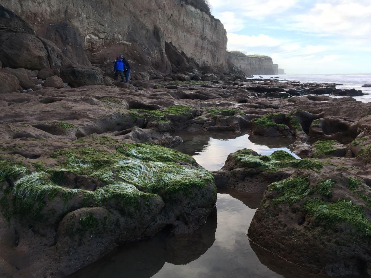Barrancas de Mar del Plata