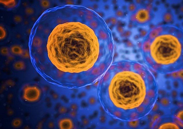 Unas células (imagen referencial)