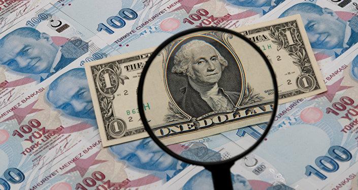 Dólar estadounidense y liras turcas