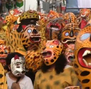 Los 'tigres' invaden las calles mexicanas