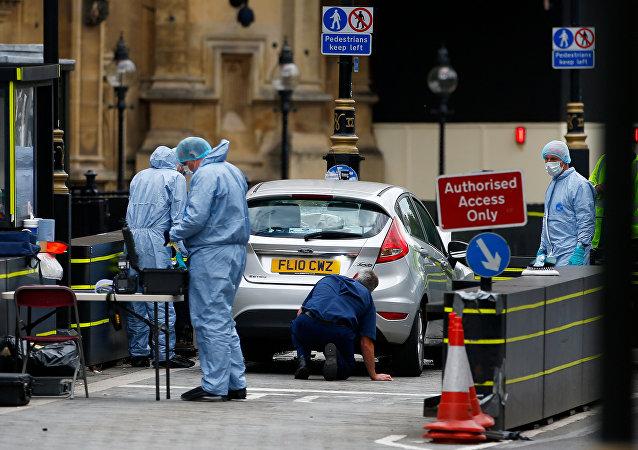 Los expertos frente al Parlamento en Westminster, Londres