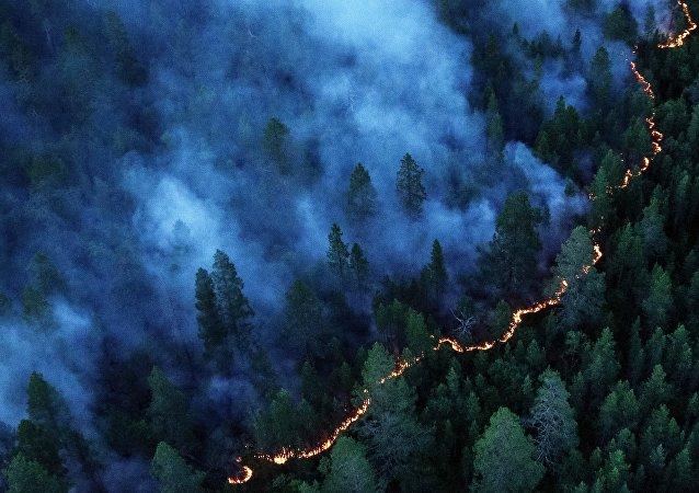 Incendio forestal en Rusia (Archivo)