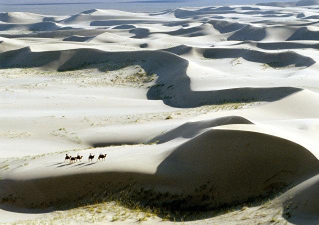 El desierto de Gobi, Mongolia