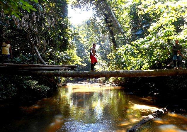 La expedición de Funai detinada a encontrar tribus indígenas aisladas