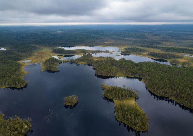 La tierra de los 1.000 lagos: ¡descubre la belleza hipnótica de la región rusa de Carelia!
