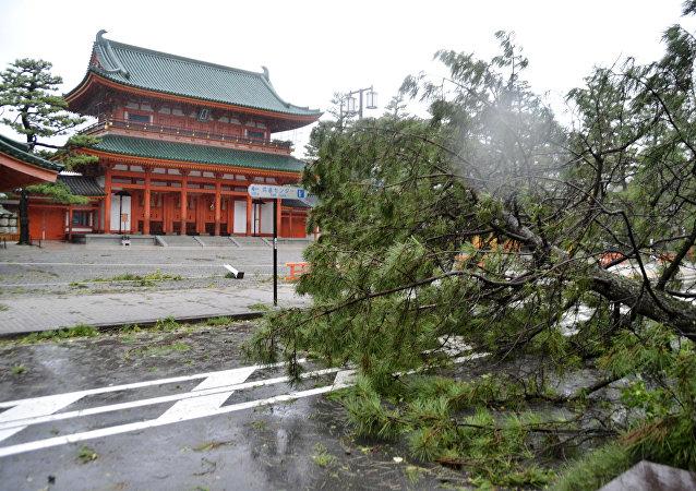 Consecuencias del tifón Jebi en Japón