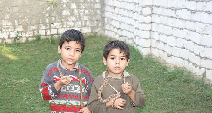 Niños jugando con las serpientes en la aldea de Abu Rawash, Egipto