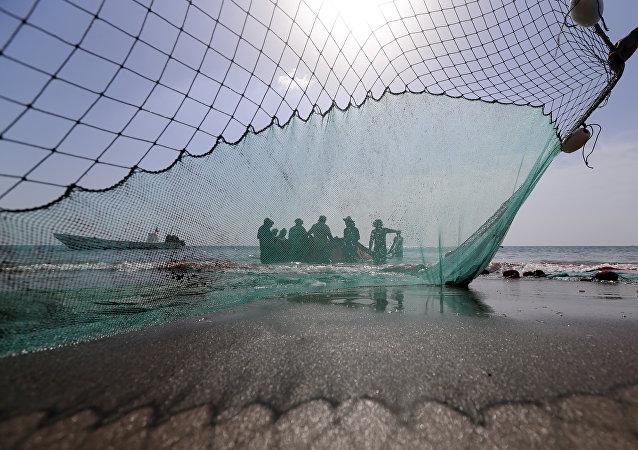 Pescadores (imagen referencial)