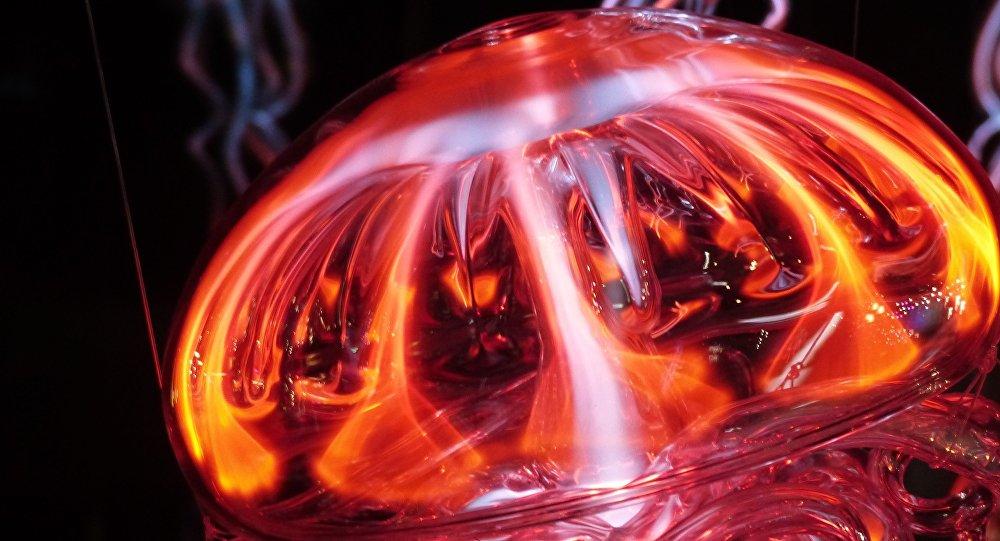 Una medusa imagen ilustrativa