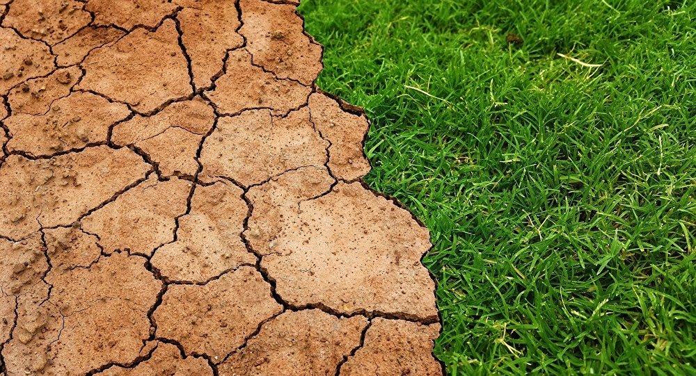 Sequía se adelanta