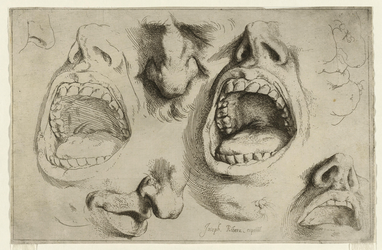 Estudios de nariz y boca