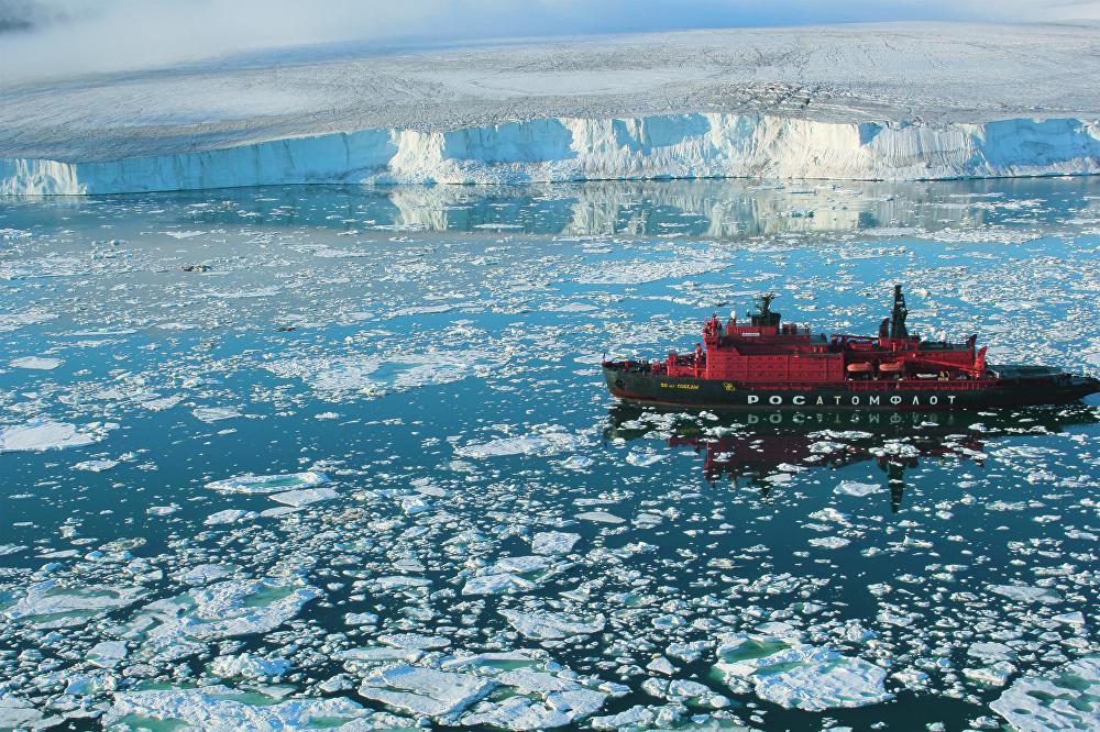 La obra 'Cerca del glaciar' de Dmitri Schekin fue fotografiada en la isla Hall, situada en la Tierra de Francisco José (región de Arjánguelsk).