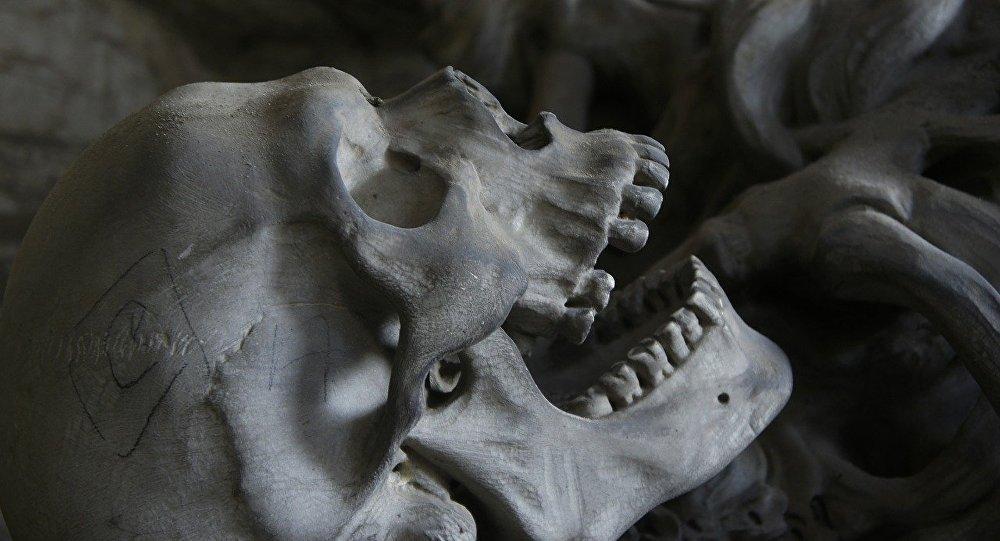 Un esqueleto, referencial