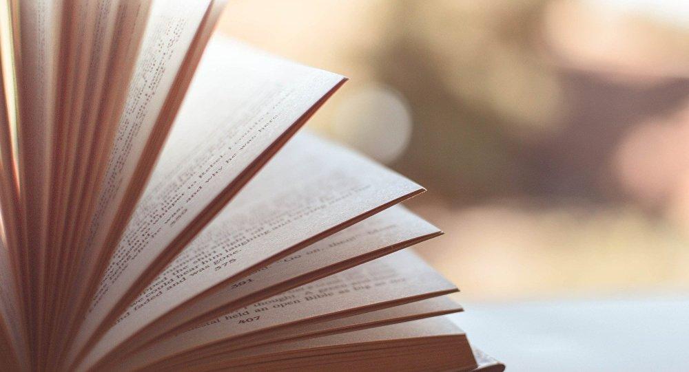 Libro (imagen referencial)