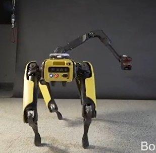 SpotMini, robot de la empresa Boston Dynamics