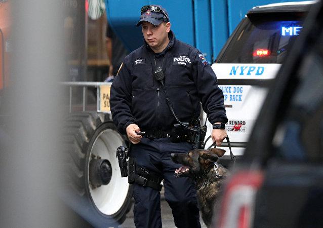 Agente de policía de Nueva York, EEUU (imagen referencial)