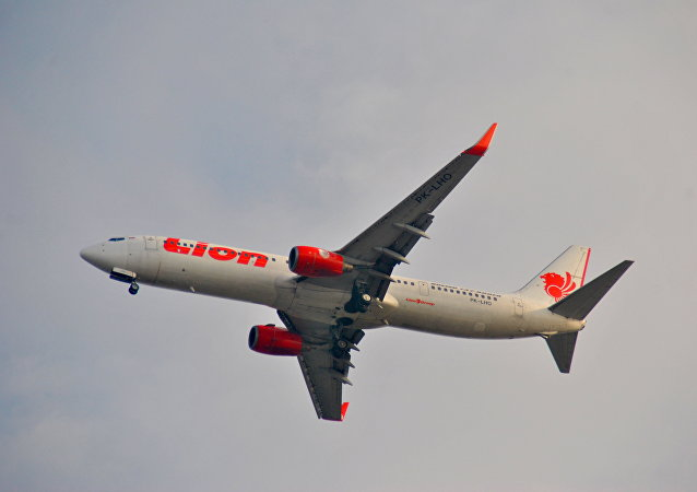 Un Boeing 737 de la aerolínea indonesia Lion Air (archivo)