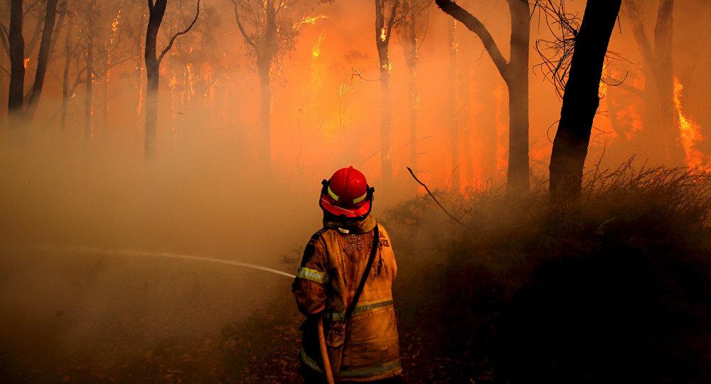 Incendios forestales en Australia