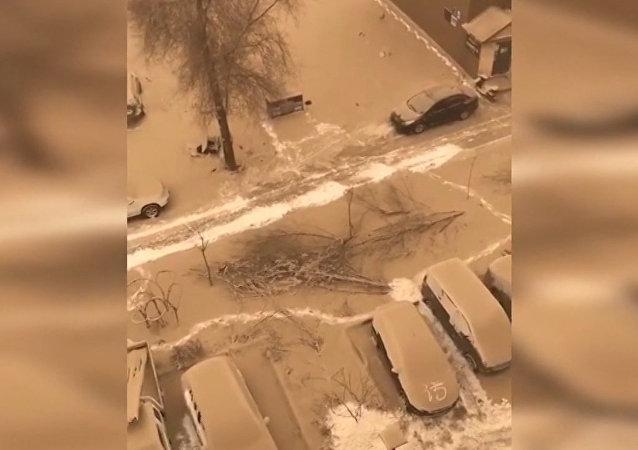 Una rara tormenta de nieve y arena azota el noroeste de China