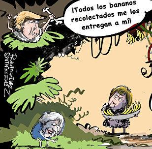 Así es la ley de la jungla internacional