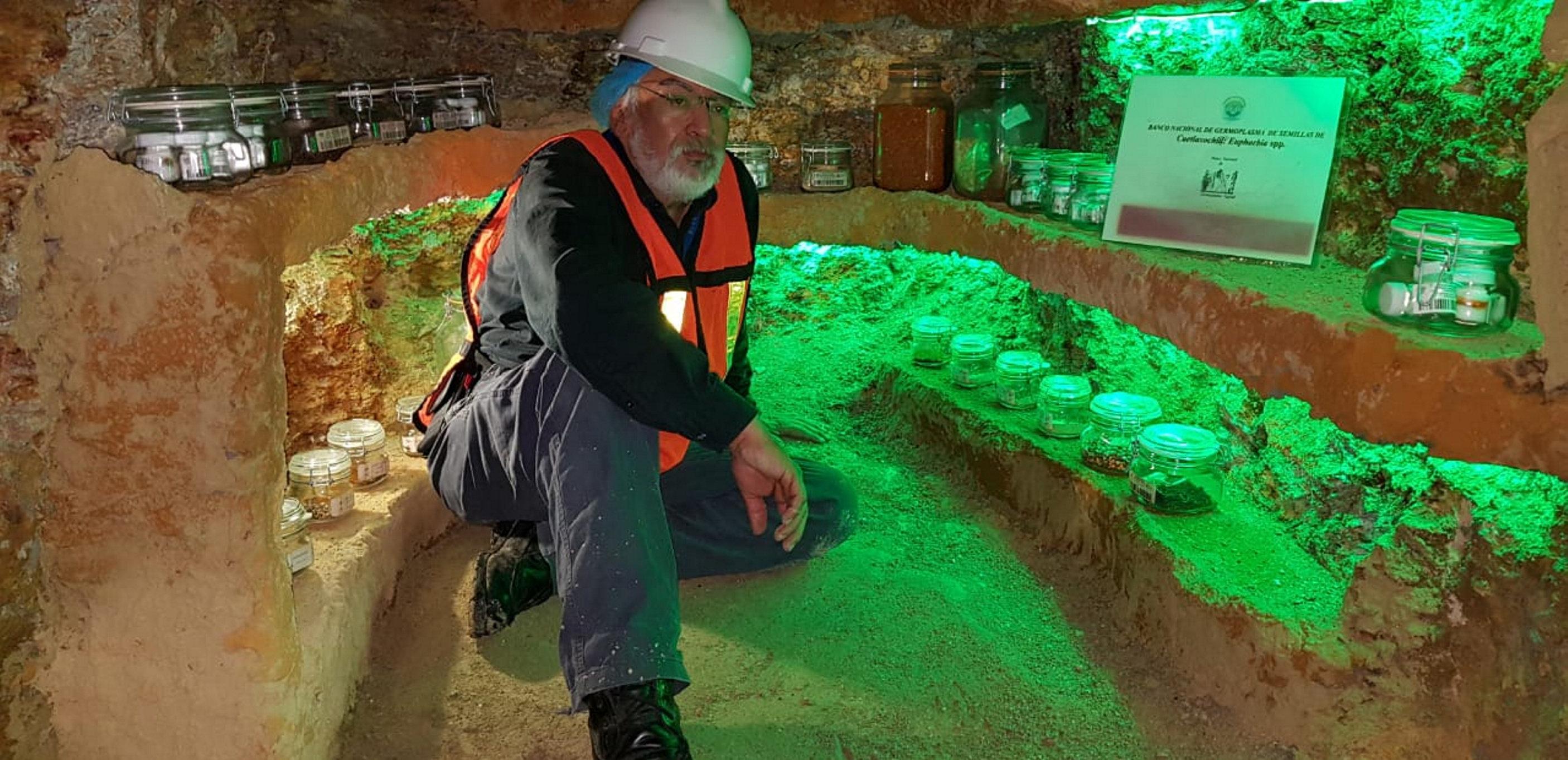 Jesús Axayácatl Cuevas Sánchez, curador del Banco Nacional de Germoplasma Vegetal, en el interior de una mina prehispánica