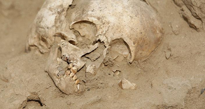 Restos de niños de la cultura precolombina Chimú (Archivo)